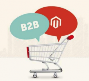Magento e-commerce B2B